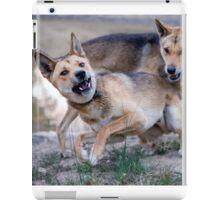 Playful Dingoes iPad Case/Skin