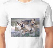 Playful Dingoes Unisex T-Shirt