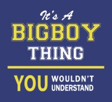 It's A BIGBOY thing, you wouldn't understand !! by satro