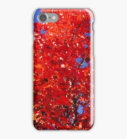 Fall Reds--If you like it buy it! Try a cell phone cover. It is the season to show Love, purchase from a small business iPhone Case/Skin