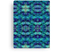 d23: scales Canvas Print