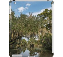 New Orleans Swamps iPad Case/Skin