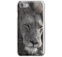 Lion Man - Photographic Nature Print iPhone Case/Skin