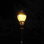 Street Lamp Barcelona by Sue Ballyn