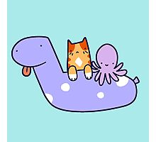 Pool Toy Tabby and Octopus  Photographic Print