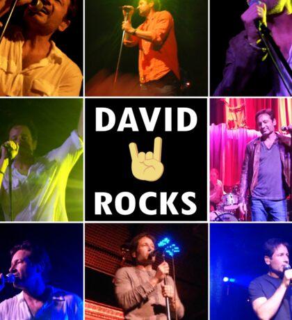 David Duchovny Rocks Sticker