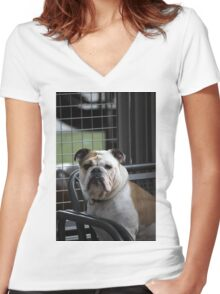 mastiff dog Women's Fitted V-Neck T-Shirt