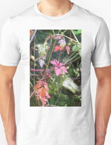 colorful leaves in the forest T-Shirt