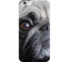Take me with you..... iPhone Case/Skin