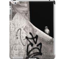 urban dweller iPad Case/Skin