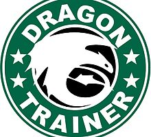 Dragon trainer by AinyRena