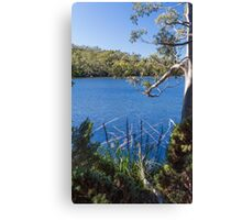Lake Dobson, Tasmania, #5 Canvas Print
