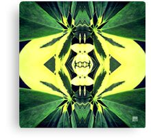 Tropical Kaleidoscapes 1 Canvas Print