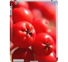 Rowan Berries iPad Case/Skin