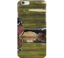 Male Wood Duck - Mud Lake iPhone Case/Skin