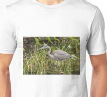 A Great Blue Heron fishing - Mud Lake, Ottawa, Canada Unisex T-Shirt
