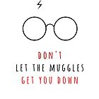 Don't Let The Muggles Get You Down by raeuberstochter