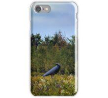 """""""3 Crows in Field"""" -1999-2001 Steel iPhone Case/Skin"""