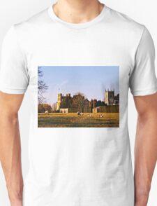 Coughton Court Estate. Unisex T-Shirt