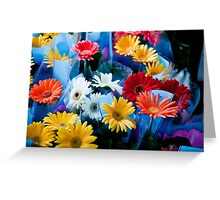 Rainbow Daisies Greeting Card