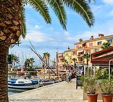 Port of Sanary-sur-Mer , Var, France by 7horses
