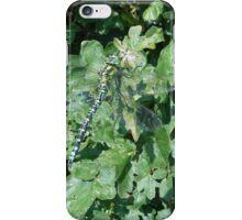 clean shot iPhone Case/Skin