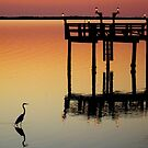 Stalking The Sunset Waters by Mikell Herrick
