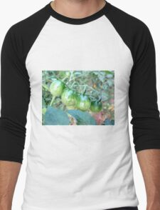 Solanum lycopersicum Men's Baseball ¾ T-Shirt