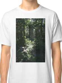 PERCEPTIONS OF TIME EXHIBITION Classic T-Shirt