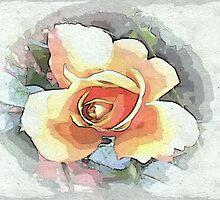 Rose head by OlaG