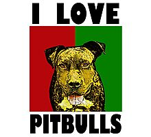 I Love Pitbulls, Black Font Photographic Print