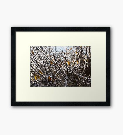Christmas Decorations by Mother Nature - Frozen Golden Leaves and Brilliant Bokeh Framed Print
