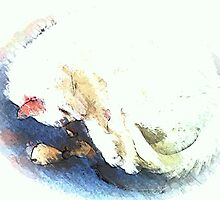 Dreeming by OlaG