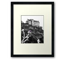 Thistle and Castle Framed Print