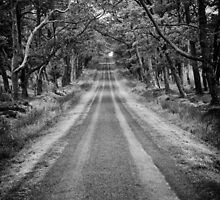 Bavelaw Avenue by darkedinburgh