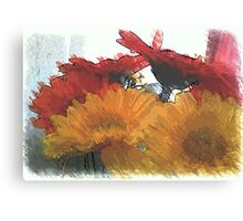 Gerber .... daisy like Canvas Print