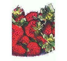 Still life ... Strawberries  Photographic Print