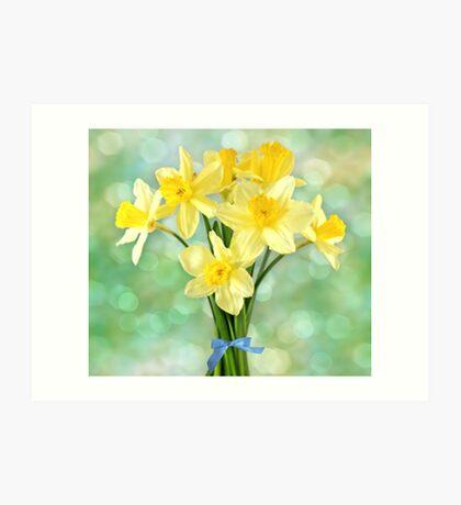 March Daffodils Art Print