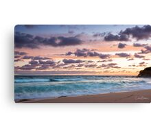 Fluffy things Canvas Print
