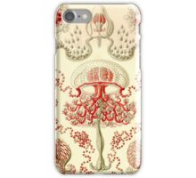 Anthomedusae - Ernst Haeckel iPhone Case/Skin
