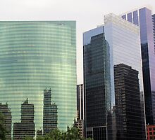Chicago Reflected by Kathleen Brant