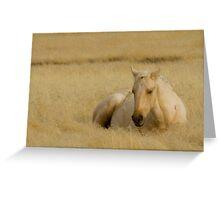 Golden Grass & Golden Horse Greeting Card