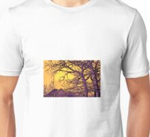 Beautiful rural scene Unisex T-Shirt