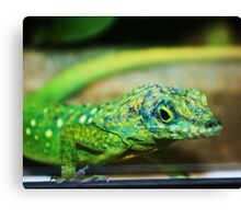 I Just Came To Say Hello! Canvas Print