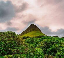 Benbulben Mountain, Sligo, Ireland by Mark Bangert