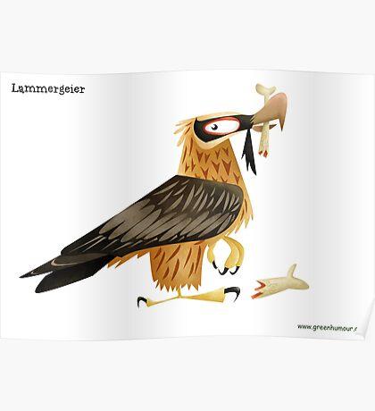 Lammergeier Caricature Poster