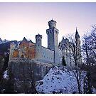 Neuschwanstein Castle by Alexey Dubrovin