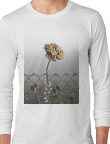 Wild is the Wind Long Sleeve T-Shirt