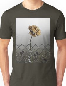 Wild is the Wind Unisex T-Shirt