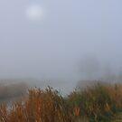 Misty Midi. by Paul Pasco